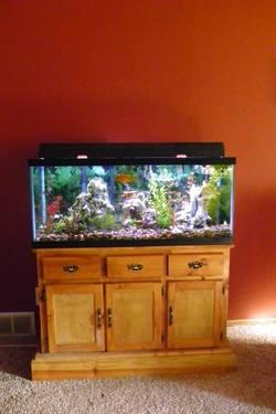 75 Gallon Fish Tank with Custom Made Stand & Filtration System Ect for
