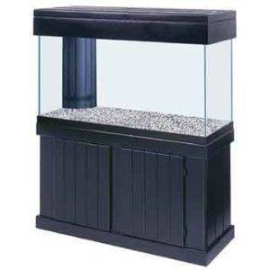 Clean Used 75 Gallon Fish Tank with Filtration System, etc for sale in