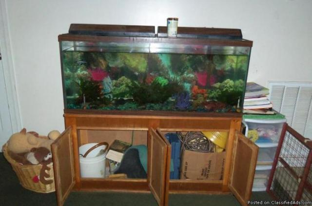 55 gallon fish tank, cabinet and lots of extra supplies   Price: 100