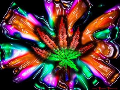 Awesome things to look at when your stoned | Grasscity Forums