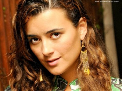 Cote de Pablo images Cote de Pablo Wallpaper HD wallpaper and background photos (30989444)