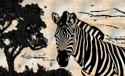 zebra drawing Wallpaper and Background Image | 1790x1100 | ID:326272 - Wallpaper Abyss
