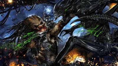 Alien vs. Predator HD Wallpaper   Background Image   2400x1350   ID:785112 - Wallpaper Abyss