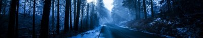 Winter Road HD Wallpaper | Background Image | 5760x1080 | ID:747362 - Wallpaper Abyss