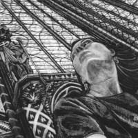 Dan Steeves - Visual Artist