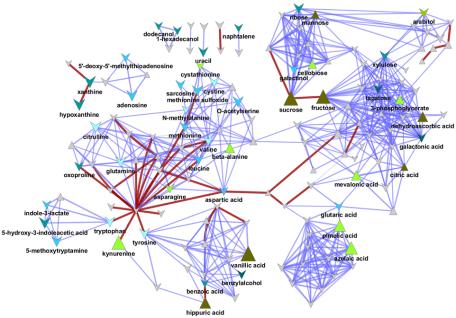 network DM
