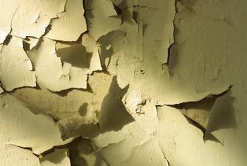 Interior Moisture Damage Is Peeling the Paint and Drywall | Home Guides | SF Gate