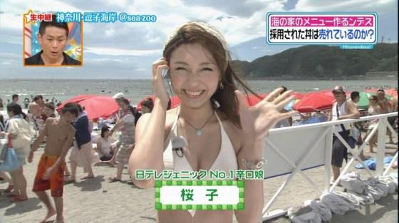 【谷間キャプ画像画像】テレビに水着や下着姿で出てくる美女のオッパイがエロいw 14
