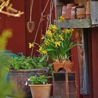 Доступные идеи декорирования сада