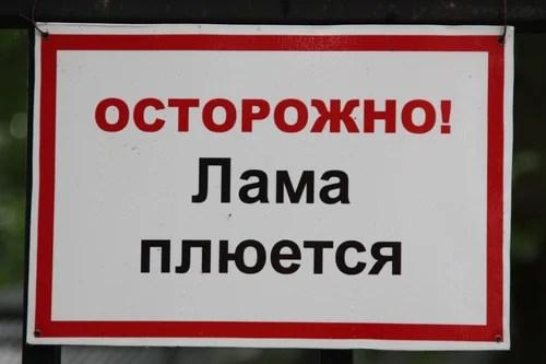 0 81069 46c4da66 L Лимпопо в Нижнем Новгороде