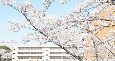 日本留學雜談#5 原來各國約會文化是這樣子的⋯