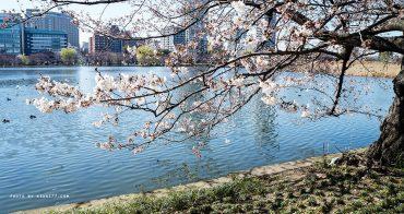 東京懶人包⎮上野淺草周邊全攻略 吃喝玩樂/景點活動