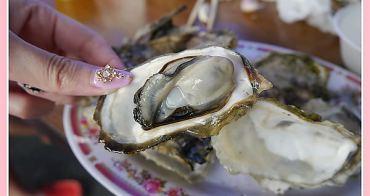 【妮❤吃】超Juicy澎湖烤牡蠣!100元給你8顆大大享受。嘉澎碳烤牡蠣