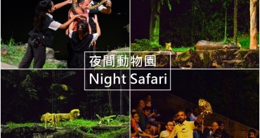 【新加坡自由行】5天4夜新加坡自由行~夜間動物園 Night Safari。全球第一!無柵欄近距離看動物