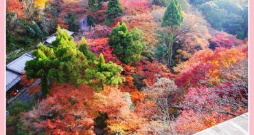 【2012秋❤京阪】4天3夜賞楓行。這裡美得像幅畫。清水寺 x 清水坂 x 地主神社
