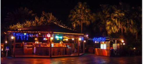Nantou|南投‧魚池|晶園渡假村*夜晚篇