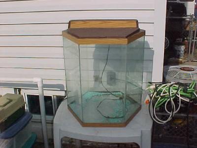 20 gallon octagon aquarium details about octagon fish for Fish tank divider 75 gallon