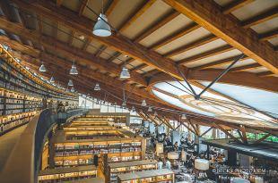 【九州】。日本最美圖書館~武雄市圖書館、武雄神社夫妻樹求良緣!佐賀旅行景點