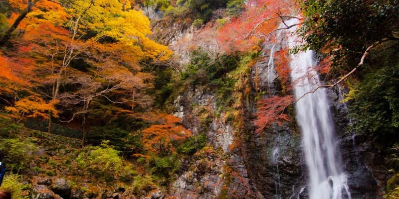 【大阪】。日本小旅行大阪賞楓名所の人気紅葉景點 明治之森箕面國定公園