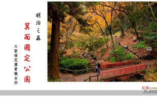 【大阪】。2012 日本小旅行の人気紅葉|大阪賞楓名所~明治之森箕面國定公園