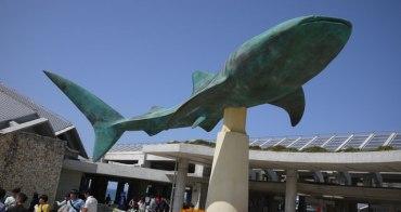 ♬『2013沖繩親子遊』Day2. 沖繩美之海水族館-親子必遊行程♬