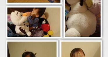 『現貨快閃』多功能玩偶毯●美國Zoobies●是娃娃、是枕頭更是毯子