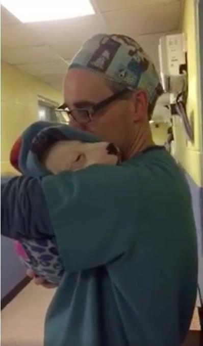 En el video, Meesha, una cachorra combinación con pit bull, lloriquea mientras Moses la mece suavemente. Le canta y le besa la cabeza.