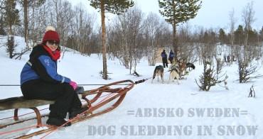 瑞典阿比斯庫景點|預約『Lapland Trip北極秘境極光之旅』體驗狗拉雪橇穿梭在Abisko極地森林裡的快感(內有影片)