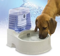Small Of Dog Water Bowl