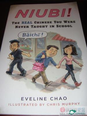 niubi-book-chinese-foul-language-swear-words-eveline-chao