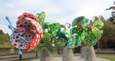 鹿兒島|霧島藝術之森 (霧島アートの森)- 與大型裝置藝術品面對面的大自然空間