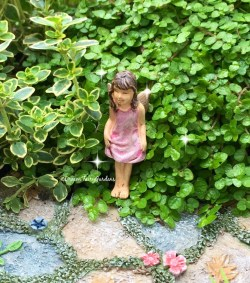 Glomorous Get Shipping Estimate Fairy Micro Mini Tiny Mini Miniature Micro Mini Fairy Garden Accessories Micro Miniature Fairy Garden Accessories