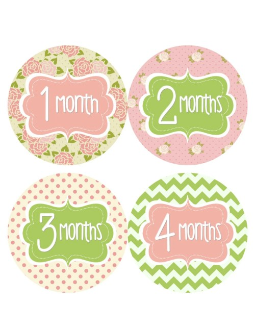 Medium Of Baby Month Stickers