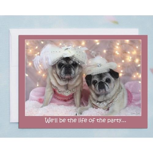 Medium Crop Of Funny Birthday Pictures