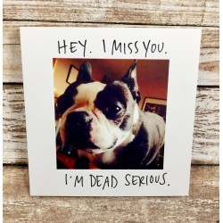Mesmerizing Miss You Blank I Miss Miss You Blank Ny Ny Dog Greeting Card Miss You Blank I Miss Miss You Blank Ny Miss You Ny Sms Miss You Ny Images