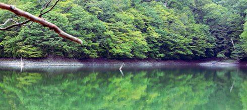 一個人的日本大縱走14天✎速記心得(上):松島、北上線追火車、五能線十二湖、靈場恐山
