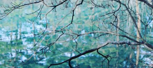 一個人旅行❆《福島》冬の東北&南北海道賞雪泡湯Day2:在山林裡遇見夢幻Tiffany藍~絕美五色沼