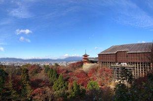 【2017 關西生日】帶媽媽遊京都🍁速記心得🍁