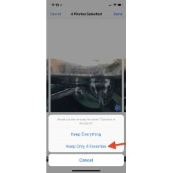 Small Crop Of How To Select All Photos On Iphone