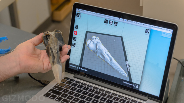 How The AMNH Is Using 3D Printing To Copy Dinosaur Bones
