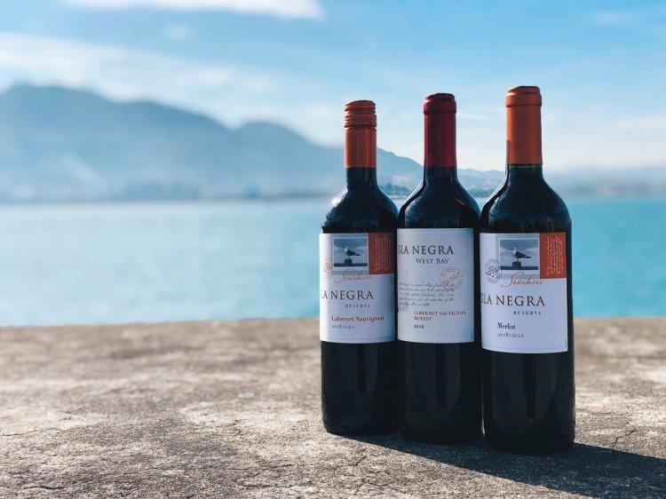 ISLA NEGRA 智利之星葡萄酒 Review 》新世界進口紅酒