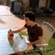【グロ動画:馬鹿】サボテンを握ってみたら手が凄いことになった件