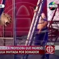 【グロ注意】サーカスの悲劇!ライオンが暴走して女性の首を・・・