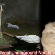【グロ注意】中国で麺製造映像が流出!もう食わない方が良い・・・