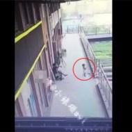 【衝撃映像】ガラスがあると思って近づいた幼女が高層ビルから落下・・・