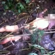 【レイプ殺人】拉致されレイプされた後に食べられた女性・・・ ※超閲覧注意