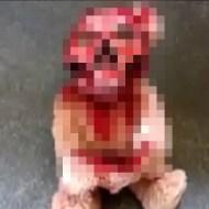 【トラウマ】チャッキーかよw血塗りテディベアが完全に呪われててヤバいw ※動画あり