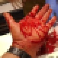【大怪我】イグアナに噛まれた!だが大丈夫だ問題ない!←いやいやめっちゃ血出てエグれてますやん・・・ ※閲覧注意