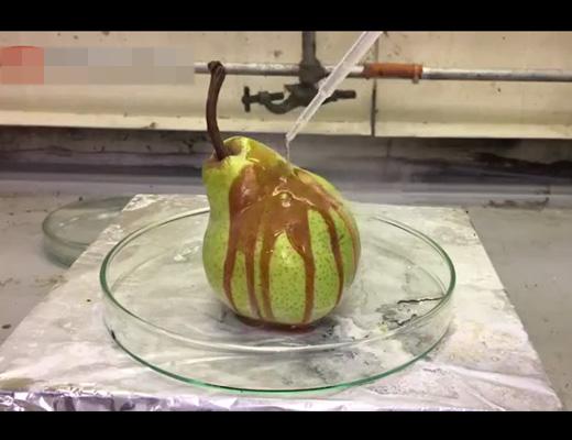 【衝撃映像】ナシに濃塩酸かけてみたら・・・ これが人体だと思うとぞっとする