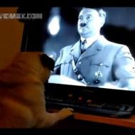 【衝撃】犬にナチス式敬礼教えて国家権力に逮捕された詳細動画がこちらw